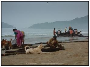 Fishermen (9)