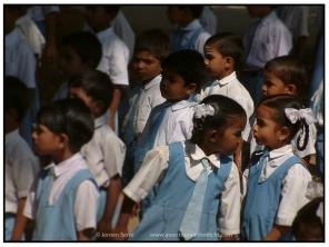 India (50)