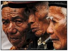 Indonesië (35)