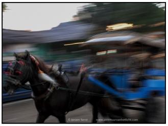 Indonesië (4)