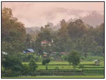 Indonesië (46)