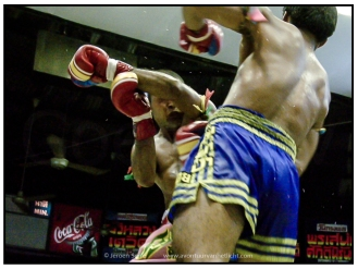 thaiboxing (16)