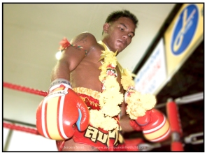 thaiboxing (5)