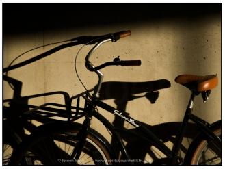 urbanism (19)